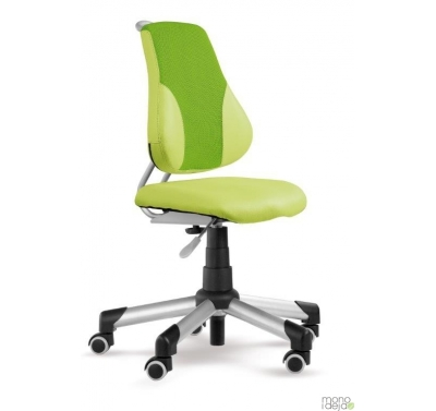 Study swivel chair